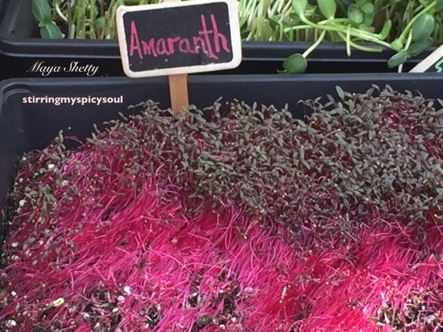 Amaranth for garnishing