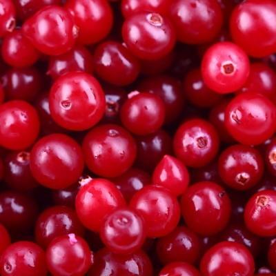 cranberries1-400x400